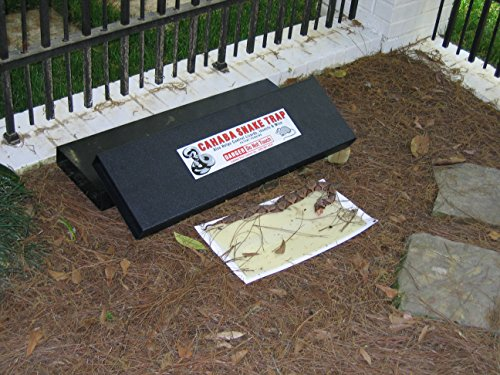 1-Pk-Snake-Trap-Large-With-2-Catch-Inserts-0-0