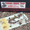 1-Pk-Snake-Trap-Large-With-2-Catch-Inserts-0-4