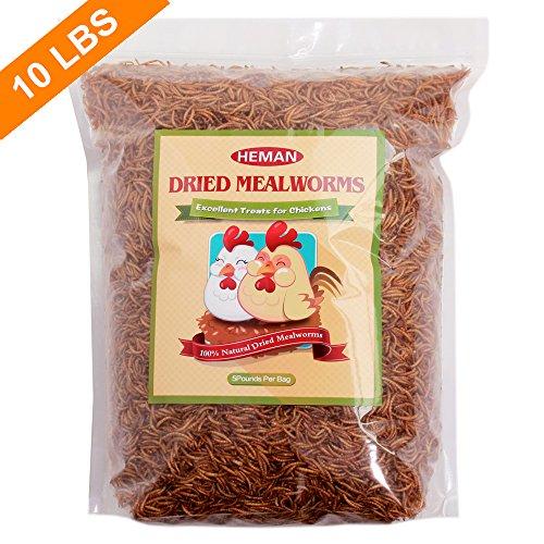 10-LBS-Natural-Dried-Mealworms-for-Wild-Birds-Chicken-Duck-etc-2-bags-of-5lbs-0