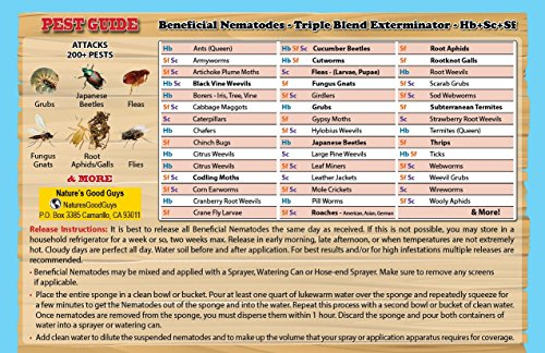 250-Million-Live-Beneficial-Nematodes-HbScSf-Kills-Over-200-Different-Species-of-Soil-Dwelling-and-Wood-Boring-Insects-0-0