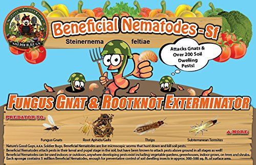 250-Million-Live-Beneficial-Nematodes-Sf-Fungus-Gnatrootknot-Gall-Exterminator-0