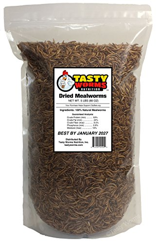 5-Lbs-Tasty-Worms-Freeze-Dried-Mealworms-Approximately-80000-Mealworms-0