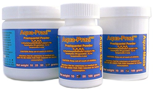 Aqua-Prazi-Koi-Care-Pond-Treatment-Fluke-Parasite-50-Grams-0
