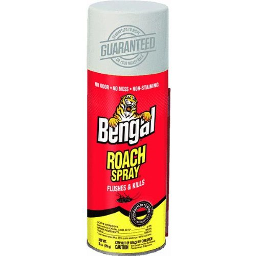 Bengal-Gold-Roach-Spray-4-Pack-Model-92464-4-BEST-Roach-Killer-on-Amazon-SAVE-0