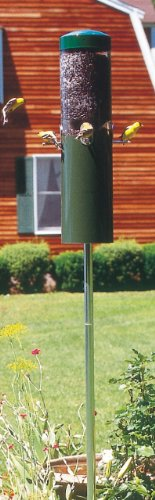 Birds Choice Classic Bird Feeder With Built In Squirrel