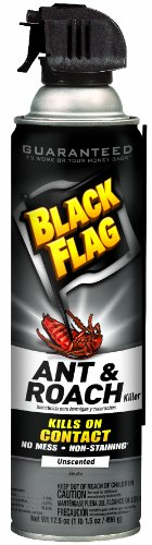 Black-Flag-Ant-and-Roach-Crack-and-Crevice-Aerosol-Unscented-Spray-175-Ounce-0