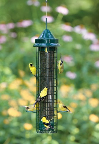 Brome-1016-Squirrel-Buster-Finch-Feeder-0-0