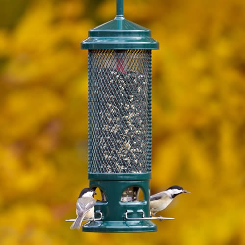 Brome-Squirrel-Buster-Legacy-Squirrel-proof-Wild-Bird-Feeder-0
