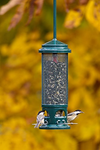 Brome-Squirrel-Buster-Legacy-Wild-Bird-Feeder-0