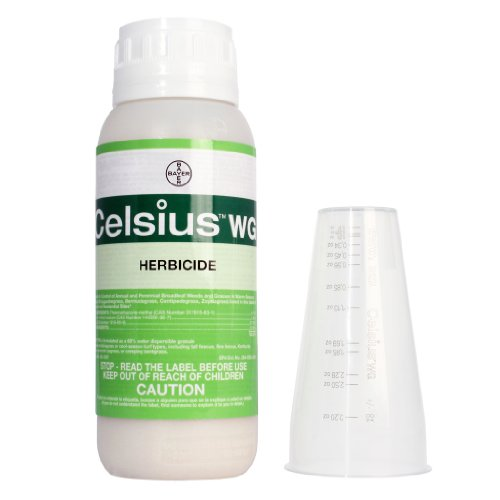 Celsius-WG-10-oz-0