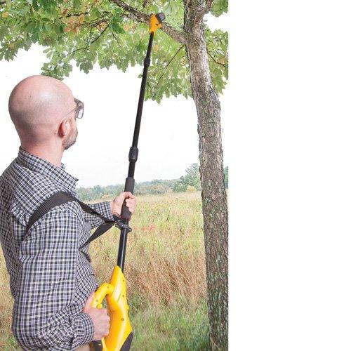 Cordless-Pole-Saw-0