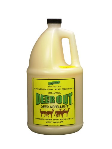 Deer-Repellent-Deer-Out-1-Gallon-Concentrate-Makes-10-Gallons-0