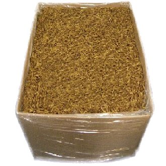 Dried-Mealworms-0