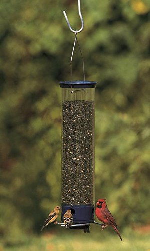 Droll-Yankees-YCPW180-Whipper-4-Port-Hanging-Bird-Feeder-0