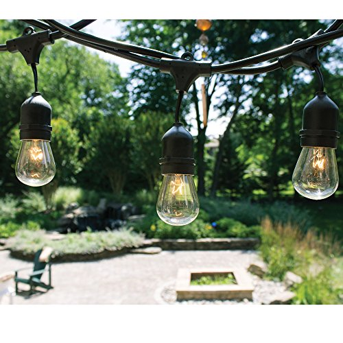Fulton-Illuminations-S14-24-Bulbs-String-Lights-with-6-Extra-Bulbs-and-13-Feet-Extension-Cord-48-Feet-0