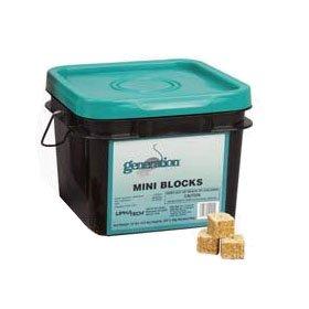Generation-Mini-Blocks-0