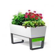 GlowPear-Urban-Garden-Self-Watering-Planter-0