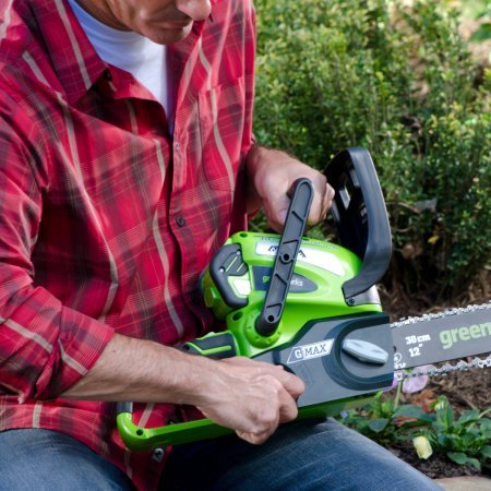 Greenworks 2000219 40v 12 Cordless Chainsaw Includes