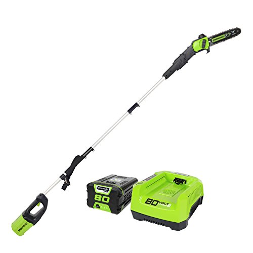 Greenworks Pro Ps80l210 80v 10 Inch Cordless Pole Saw 2ah