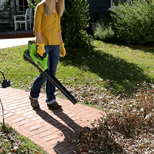 GreenWorks-STBA40B210-G-MAX-40V-Cordless-String-Trimmer-and-Blower-Combo-Pack-0-0