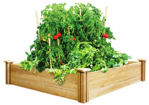 Greenes-Fence-Cedar-Raised-Garden-Bed-4-Ft-X-4-Ft-X-105-In-0