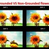 Ground-Smart-Earthing-Plant-Activator-0-1