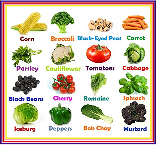 Heirloom-Vegetable-Seeds-Non-GMO-seeds-Non-Hybrid-Easy-to-Grow-0
