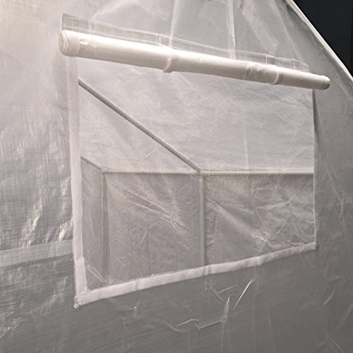 King-Canopy-GH1010-10-Feet-by-10-Feet-Fully-Enclosed-Greenhouse-Clear-0-0