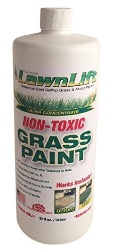 Lawn-Paint-Concentrated-Lawn-Paint-12-Units-32-oz-0