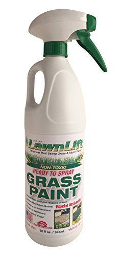 Lawn-Paint-Ready-to-Spray-Lawn-Paint-12-Units-32-oz-0