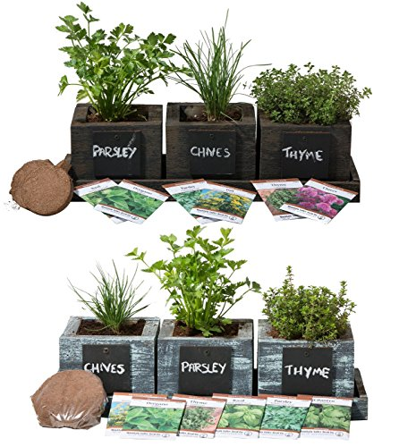 Mini-planter-herb-kit-0