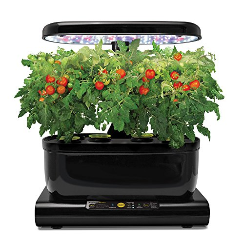 Miracle-Gro-AeroGarden-Harvest-with-Gourmet-Herb-Seed-Pod-Kit-Black-0-0