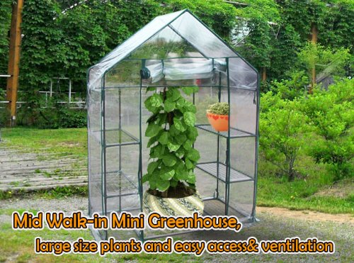 ON-Sale-Quictent-New-Mini-56x29x77-Portable-Green-House-6-shelves-Greenhouse-0-0