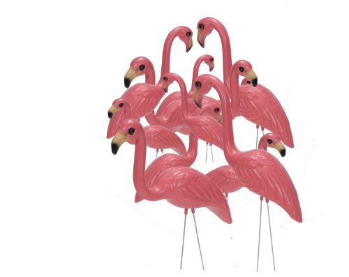 Pink-Inc-Flamingos-Pair-of-6-0