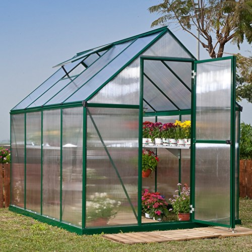 Poly-Tex-Nature-6-x-6-Foot-Greenhouse-Silver-Frame-Twin-Wall-Greenhouse-0-0