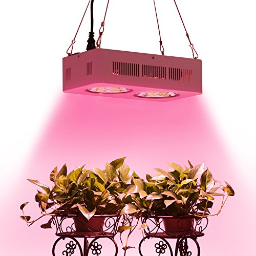 Roleadro-400W-COB-Full-Spectrum-LED-Grow-Light-with-Innovated-Chips-2nd-Generation-0