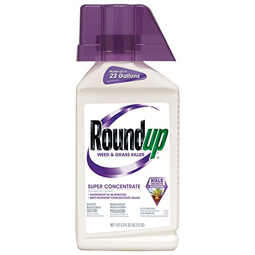Roundup-Weed-and-Grass-Killer-Super-Concentrate-0