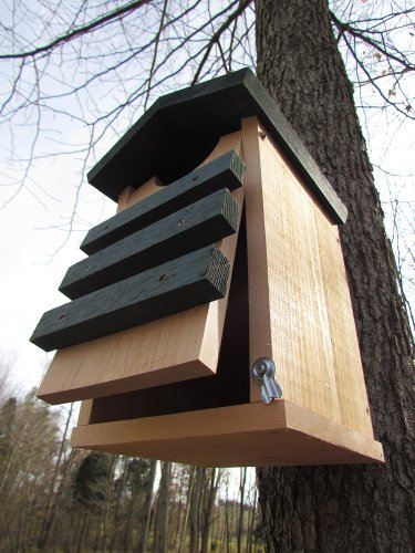 Screech-Owl-or-Saw-Whet-Owl-House-Cedar-Nesting-Box-JCs-Wildlife-0-0