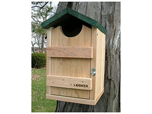 Songbird-Essentials-SE519-Screech-Owl-House-0
