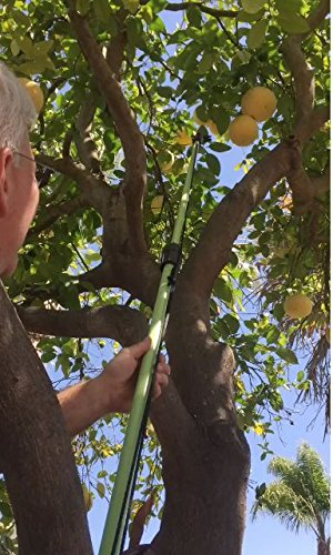 The-Twister-Fruit-Picker-with-Extension-Pole-0-1