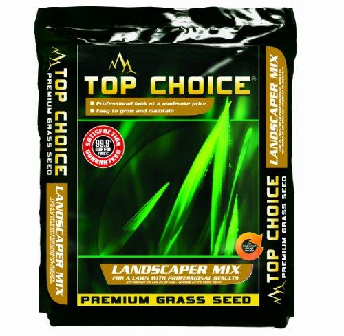 Top-Choice-17624-3-Way-Perennial-Ryegrass-Grass-Seed-Mixture-20-Pound-0