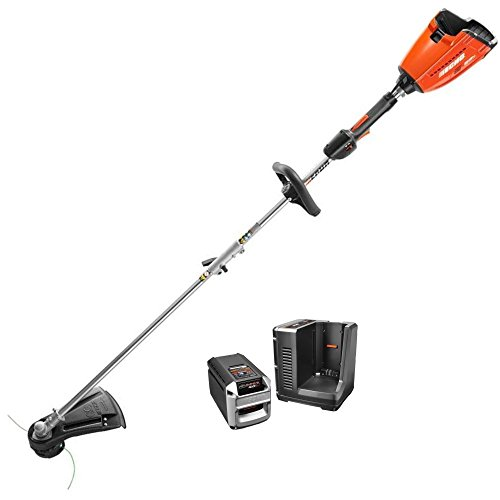 ECHO-CST-58V4AH-58-Volt-Lithium-Ion-Brushless-Cordless-String-Trimmer-with-4-Ah-Battery-0
