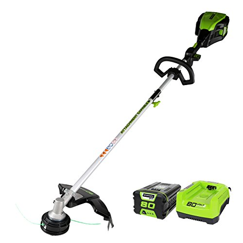 Greenworks-Cordless-String-Trimmer-Battery-and-Charger-Included-0