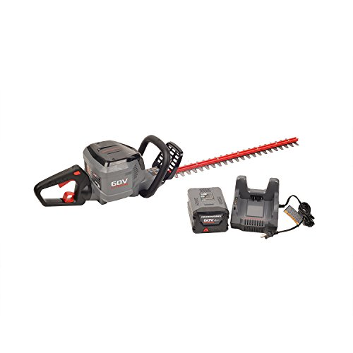 POWERWORKS-HT60B01PW-24-Hedge-Trimmer-0