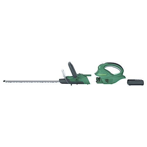Weed-Eater-20-Volt-Cordless-Interchangeable-Combo-2-tools-in-1-BT201i-0-1