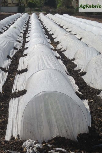 10FT-Long-Agfabric-Grow-TunnelMini-GreenhouseHoophouse-Tunnel-Kits-09oz-Row-Cover-and15Dia3ft-Tunnel-Hoops-0