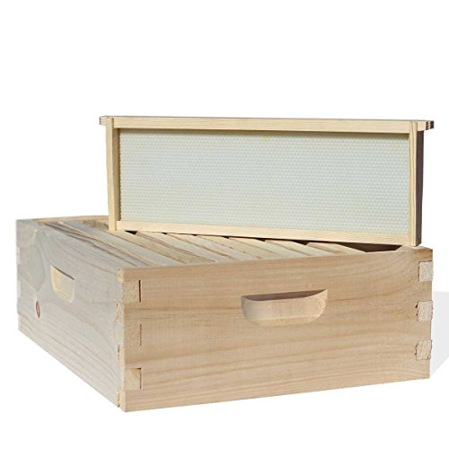 Busy-Bees-n-More-Honey-Production-Starter-Bee-Hive-Kit-including-Frames-Foundations-10-Frame-LBH10-1D3M-0-0