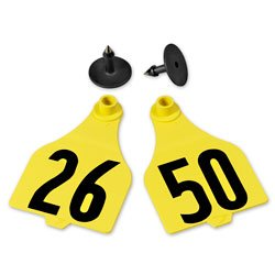 Destron-Fearing-Extended-Large-Numbered-Tags-with-Studs-Yellow-Numbers-26-50-C25235BN-0