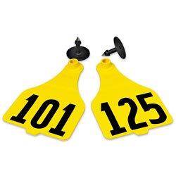 Destron-Fearing-Extra-Large-Numbered-Tags-with-Studs-Yellow-Numbers-101-125-C08001EN-0
