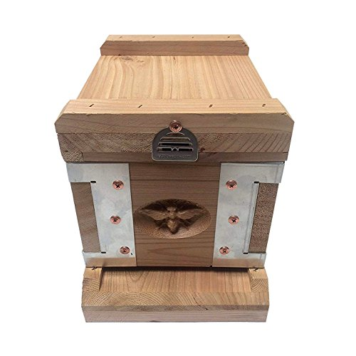 Eco-Bee-Box-Mini-Bee-Hive-1-Box-Hive-Stack-Aluminum-Brackets-0-0